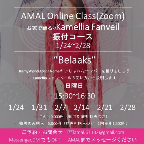 AMAL kamelliaファンベール2021.1.24-2.28.jpg