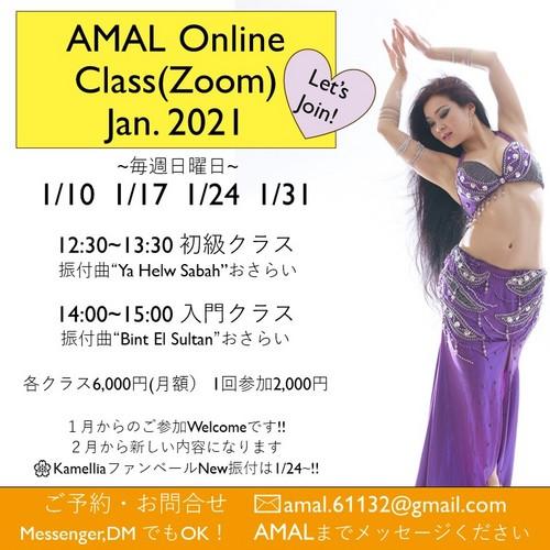AMAL Zoomオンライン2021.1.jpg
